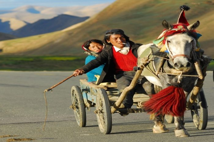 7 NIGHTS IN TIBET